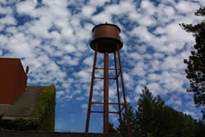 Specialty Coating Painting - Water Tower
